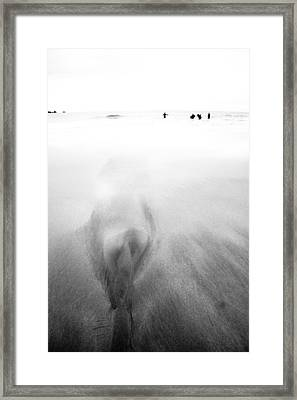 Getting Wet Framed Print by Dorit Fuhg