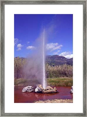 Geyser Calistoga Framed Print by Garry Gay
