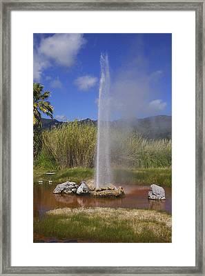 Geyser Napa Valley Framed Print by Garry Gay