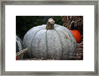 Ghost Pumpkin Framed Print by Susan Herber