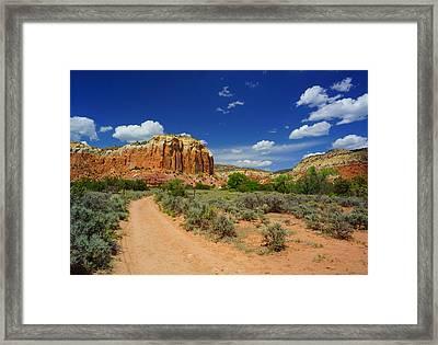Ghost Ranch Box Canyon Trail Vista   Framed Print