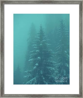Ghostly Trees In Oils Framed Print by Al Bourassa