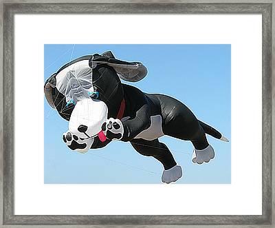 Giant Black And White Dog Kite 2 Framed Print by Samuel Sheats
