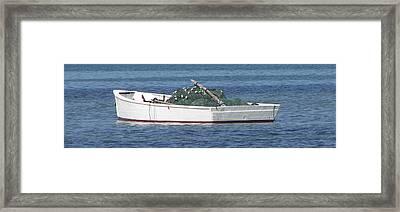 Gill Netter Framed Print by Kevin Brant