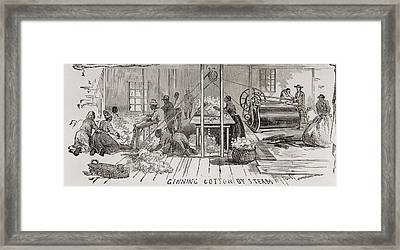 Ginning Cotton By Steam Powered Gin Framed Print by Everett
