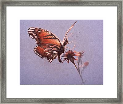 Girawheen Place Of Flowers  Framed Print by Shawn Kawa