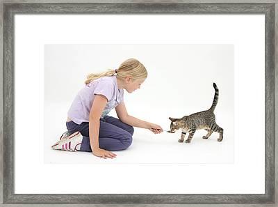 Girl Feeding Kitten From A Spoon Framed Print by Mark Taylor
