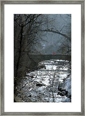 Girl On Bridge Framed Print