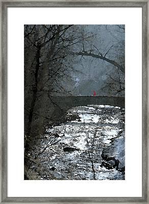 Girl On Bridge Framed Print
