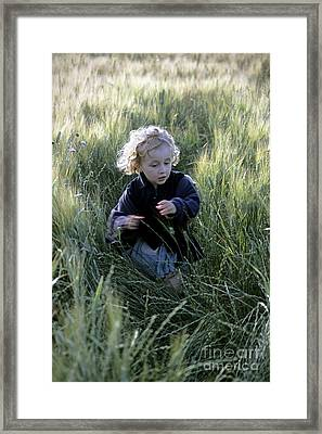 Girl Running In Wheat Field Framed Print by Sami Sarkis