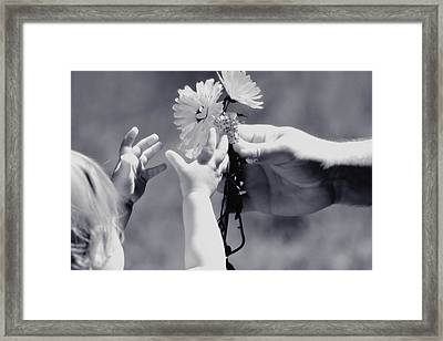 Giving Her Flowers Sweet Baby Hands Framed Print by Tracie Kaska