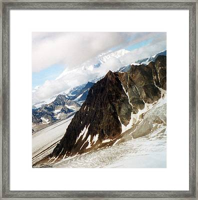 Glacier Flight 2 Framed Print