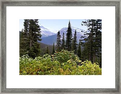 Glacier Scenery Framed Print
