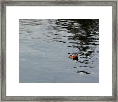 Gliding Across The Pond Framed Print by LeeAnn McLaneGoetz McLaneGoetzStudioLLCcom