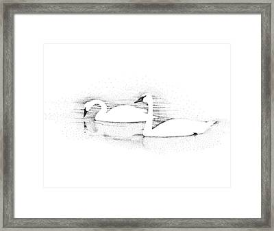 Gliding Framed Print by Norm Holmberg