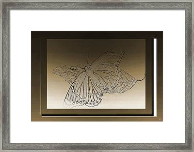 Glimmer Butterfly Collection Framed Print by Debra     Vatalaro