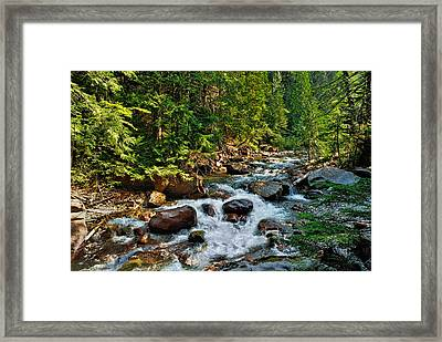 Glistening Beauty Framed Print by Lanis Rossi