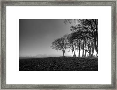 Gloomy Forest Framed Print by Sindre Ellingsen