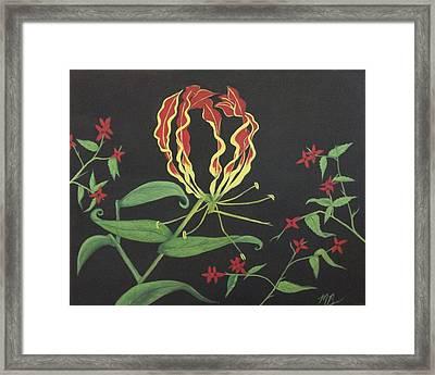 Gloriosa Framed Print by Melanie Blankenship
