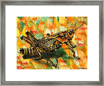 Glorious Grasshopper Framed Print by Miriam  Schulman