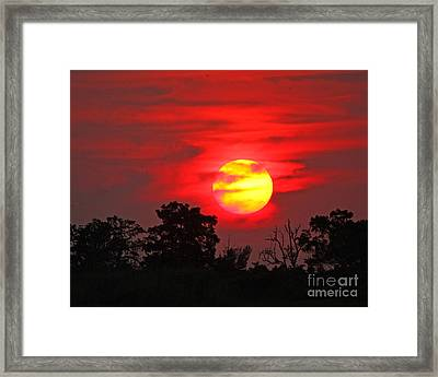 Framed Print featuring the photograph Glory Ablazed by Luana K Perez