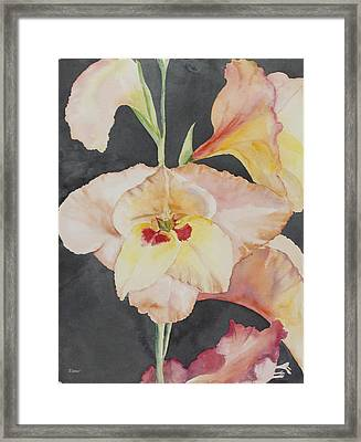 Glory Glads Framed Print