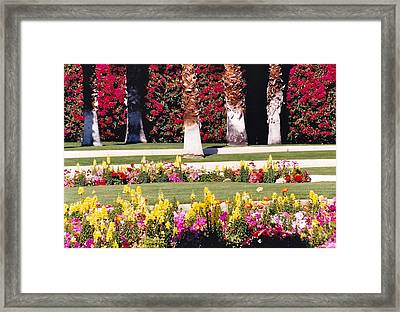 Glory Glory Framed Print