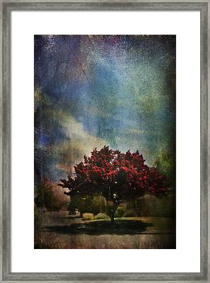 Glory Framed Print by Laurie Search