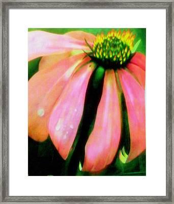 Glow Framed Print by Amity Traylor