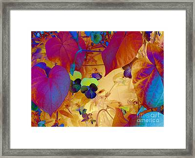 Glowing Framed Print by Erica Hanel