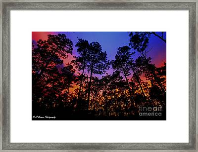 Glowing Forest Framed Print
