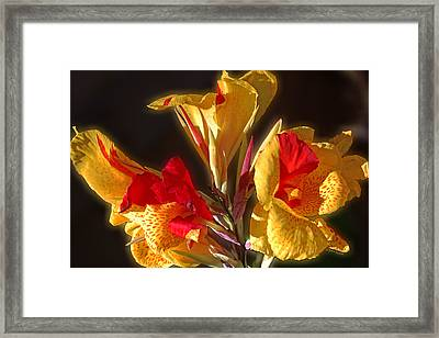 Framed Print featuring the photograph Glowing Iris by DigiArt Diaries by Vicky B Fuller