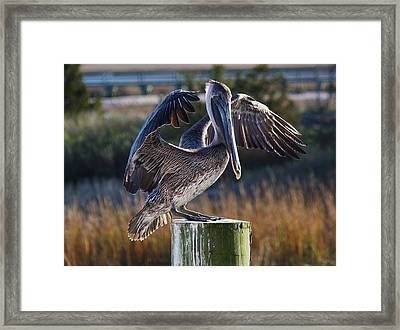 Glowing Framed Print by Paulette Thomas