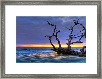 Glowing Sands At Driftwood Beach Framed Print by Debra and Dave Vanderlaan