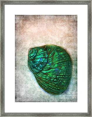 Glowing Seashell Framed Print by Judi Bagwell