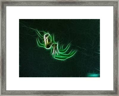 Glowing Spider Framed Print by Paul Ward