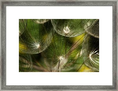 Gluvarce Framed Print