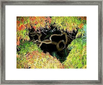 Gnarly Autumn Beauty Framed Print by Will Borden