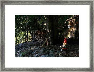 Gnome And The Woodpile Framed Print by Lorraine Devon Wilke