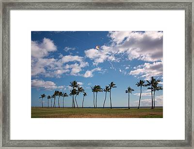 Framed Print featuring the photograph Go Fly A Kite by Craig Wood