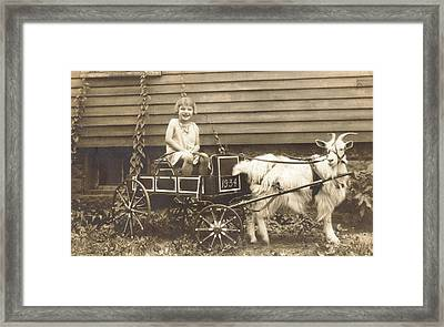 Framed Print featuring the photograph Goat Wagon by Bonfire Photography