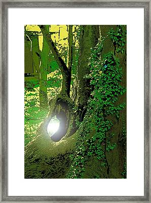 Framed Print featuring the photograph God's Eye View by Tim Ernst