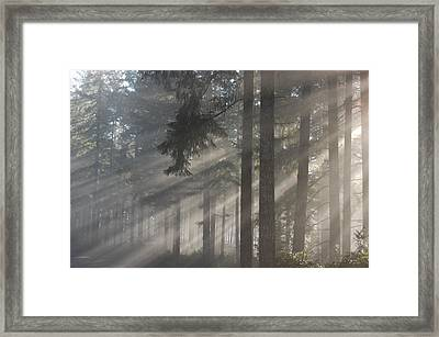 Gods Rays Framed Print