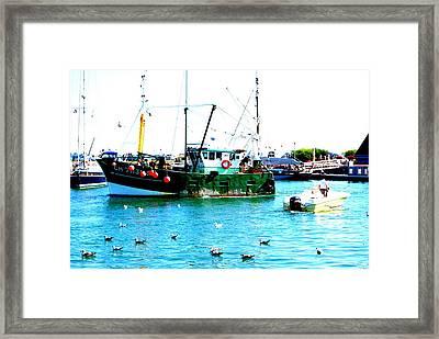 Going Fishing Framed Print by Amanda Pillet