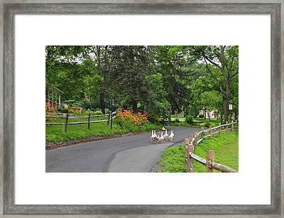 Going For A Walk Framed Print by Crespo
