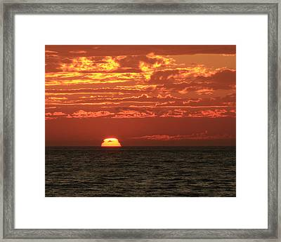 Going Going Gone Framed Print by Coby Cooper