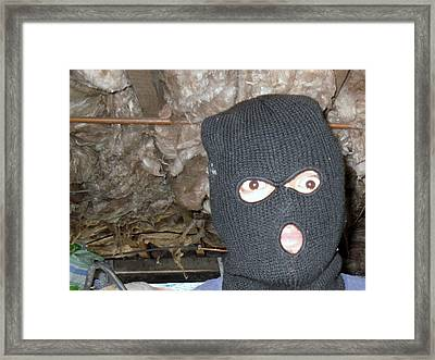 Going Underground Framed Print by Irene Eddy