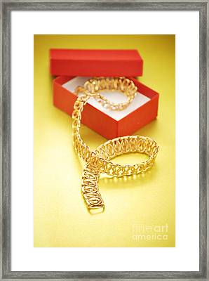 Gold Necklace Framed Print by HD Connelly