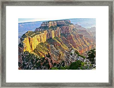 Gold Rim Framed Print