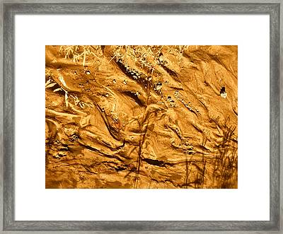 Framed Print featuring the photograph Gold River by Brian Sereda
